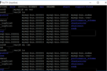 MYSQL 故障导致服务器WEB无法访问
